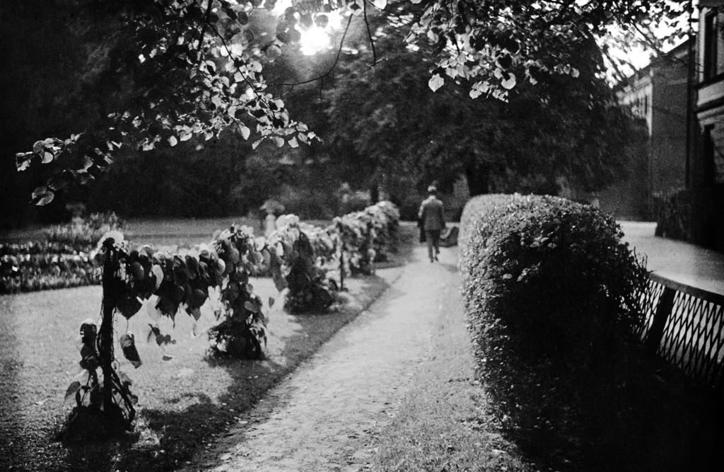 Mustavalkea puistonäkymä. Kuvan keskellä on hiekkatie, jota kävelee mies, Miehen selkä näkuu kameraan. Tietä reunustavat pensaat ja kasvit.
